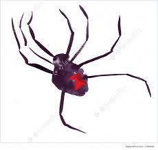 illustration of black widow spider