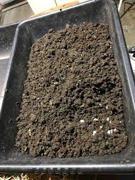 worm fancy sacramento area u0027s worms and worm castings
