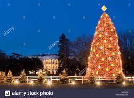 national christmas tree white house washington dc stock photo
