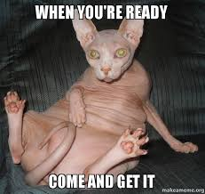 Come And Get It Meme - when you re ready come and get it make a meme