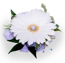 gerbera daisy corsage in draper ut draper flowerpros