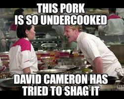 David Cameron Meme - best reactions to allegations uk pm david cameron had sex with a
