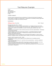 resume text format best of plain text resume sle plain text resume sle luxury