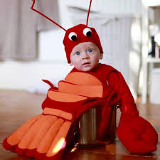 lobster halloween costumes my nephew dressed as a baby lobster nailed it aww