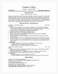 accountant resume format it resume format for experienced new resume format for