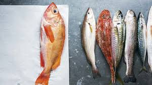 comment cuisiner la rascasse merlan mulet rascasse cuisiner d autres poissons que le saumon