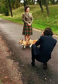 Queen Corgis The 25 Best Queen U0027s Corgis Ideas On Pinterest Corgi Puppies