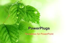 powerpoint template green bulb with leaves as a symbol of energy