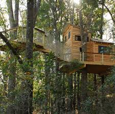 rental and retreat treehouses tree houses by tree top builders