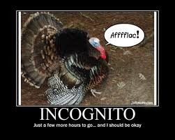 vh aflac turkey incognito thanksgiving pic