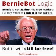 Common Sense Meme - berniebot logic bernie likes free markets common sense with