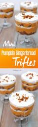 best 25 mini trifle ideas on pinterest mini dessert shooters