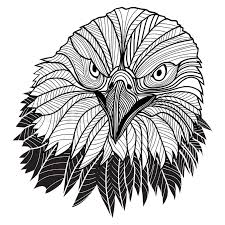 bird bald eagle head as usa symbol for mascot or emblem design