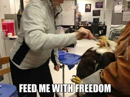Feed Me Seymour Meme - feed me by strage meme center