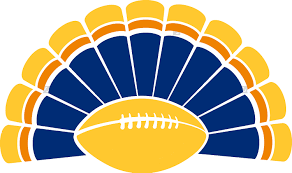 arlington catholic thanksgiving football