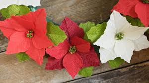 how to make a crepe paper flower poinsettia youtube