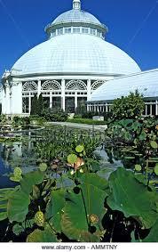 Botanic Garden Bronx by New York Botanical Garden Stock Photos U0026 New York Botanical Garden
