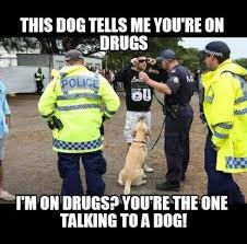 Law Enforcement Memes - police talking to dogs yet accuse you of being on drugs