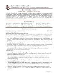 summary in a resume resume executive summary exles