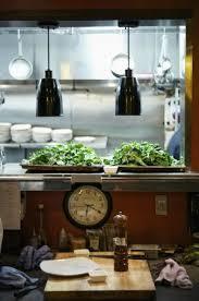 the 10 best restaurants near sandia resort casino tripadvisor