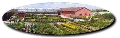 grobe u0027s nursery and garden centre home
