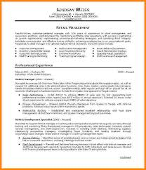 Professional Summary Resume Examples by 12 Career Summary Examples Technician Resume