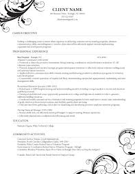 Electronic Resume Example by Sample Resume E