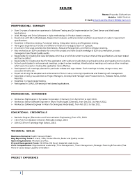 Resume For Test Lead Qa Lead Resume 23995
