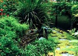 Houston Landscape Design by 45 Best Tropical Landscaping Images On Pinterest Tropical