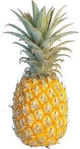vegan pineapple upside down cake recipe by renee loux