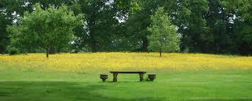 Tiered Backyard Landscaping Ideas by Garden Design Garden Design With Garden House Design English