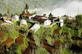 Rock Garden Darjeeling by Chattakpur Village In Darjeeling Reviews Photos History