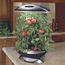 indoor kitchen garden ideas indoor vegetable garden ideas indoor hydroponic vegetable