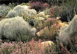 Southern Garden Ideas Southern California Garden Ideas Howstuffworks