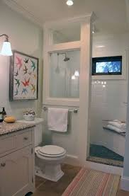 small bathroom shower remodel ideas 1062 best bathroom ideas images on pinterest bathroom ideas