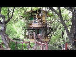 Top 10 Spectacular Tree Houses in The World  YouTube