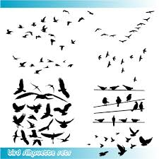 image detail for birds silhouette vector graphics u2013 nice