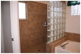 Bathroom Walk In Shower Ideas Walk In Shower Designs For Small Bathrooms Amazing 20 On Dorless