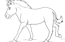 zebra color page zebra without stripes sketch coloring page