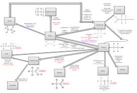 ocr chemistry f321 u0026 f322 revision notes the student room