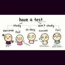 Meme Jokes Humor - mathjoke haha math humor mathmeme meme joke test study habits fail