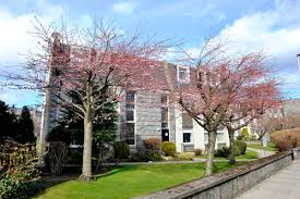 self catering accommodation aberdeen scotland
