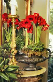 42 best images about christmas floral design on pinterest