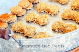 recipe for dog treats dog treats recipe add a pinch robyn