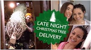 late night christmas tree delivery youtube