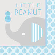 lil baby shower peanut blue baby shower decorations and party supplies at