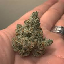 Wildfire Weed by California U0027s Marijuana Industry Has Trouble With Distribution