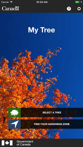 my tree on the app store
