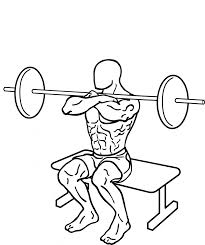 file front squat to bench 2 858x1024 png wikimedia commons