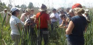 chambre d agriculture lorraine edition de verdun zoom sur le marais de chaumont